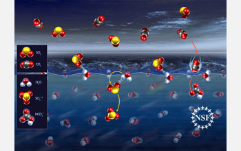 Illustration of sulfur dioxide molecules forming weak bonds with water molecules.