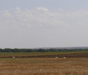 Photo of plain field in Kansas