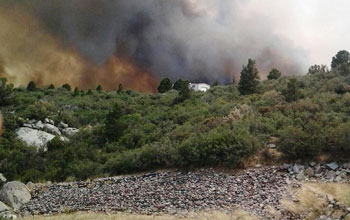 Photo of wildfire next to a house and forest in Arizona