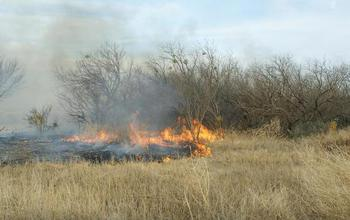 Fire burning in a dry field