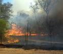 Fire burning in a protected area
