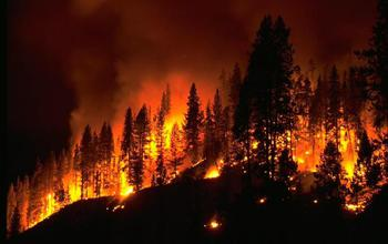 Increased wildfire danger in the Southwest United States is associated with La Niña events.
