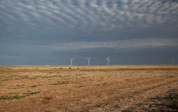 Photo showing a wind-farm on the horizon in Lubbock County, Texas.