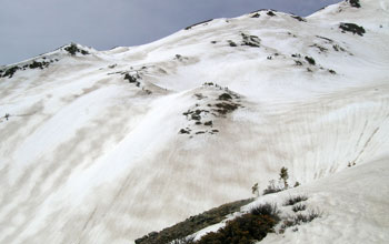 Stripes of dust visible on the snow in Colorado's Rocky Mountains.
