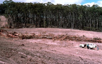people and a car on a deforested part of WogWog, Australia