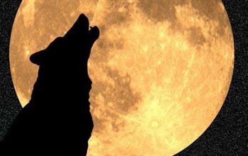 By Light Of Wolf Moon >> By The Light Of January S Wolf Moon Nsf National Science Foundation