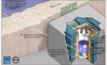 Illustration showing the XENON100 detector which detects Weakly Interacting Massive Particles.