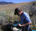 Photo of biologist Josh Miller studying bone survey data sheets along Yellowstone's Northern Range.