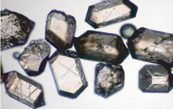 Tiny crystals called zircons are used to date oceanic crust.