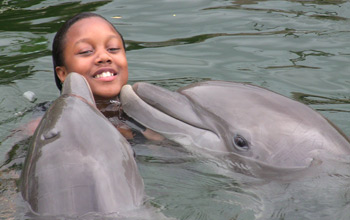 girl in water with dolphins