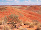 Red soil in the Australian desert