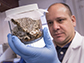Giovani Bellicanta examines one of several containers of bedbugs
