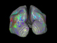 colors show brain sections active