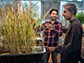 Imtiyaz Khanday and Professor Venkatesan Sundaresan with cloned rice plants