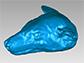 3-D mesh of a fruit bat's head