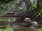 artist's rendering of Siamogale melilutra, a giant prehistoric otter