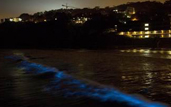 a red tide turns bioluminescent off Scripps Oceanography Pier