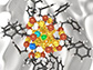 the ligand-protected metal nanoclusters