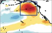 early stages of North Pacific warm blob