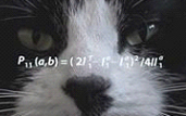 image of a cat with an equation over it's face