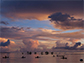 fishers at dawn in Solomon Islands