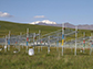 experimental site at the Haibei Alpine Grassland Ecosystem Research Station