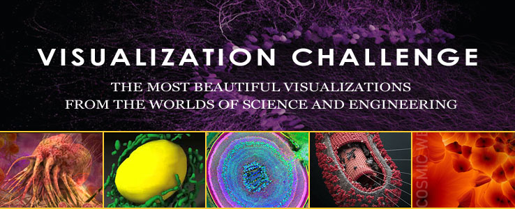text and illustration: Special Report: International Science and Engineering Visualization Challenge