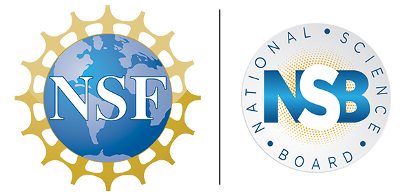 NSF and NSB logos