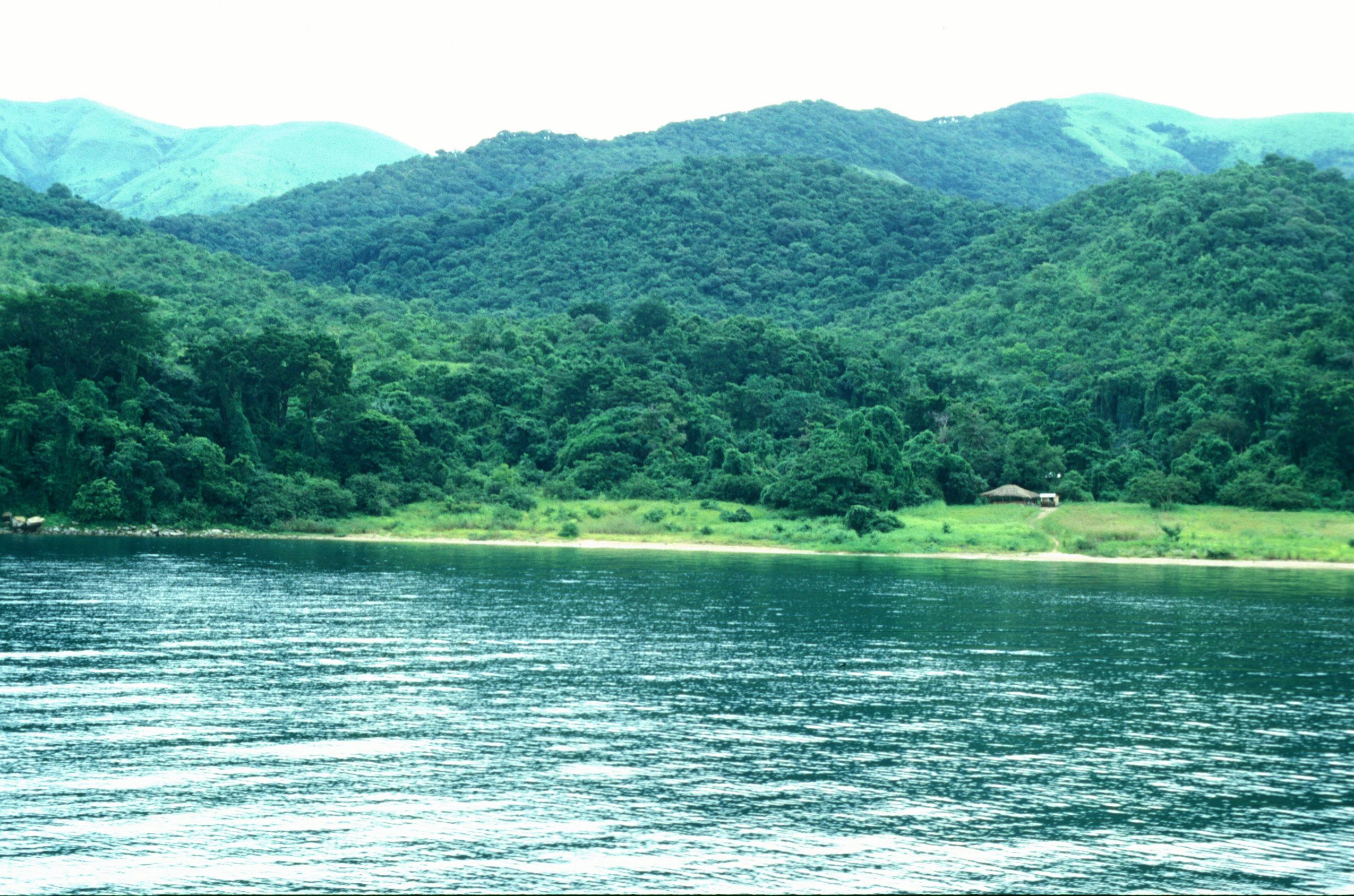 lake ecosystem An ecosystem health index methodology (ehim) was developed for assessing lake ecosystem health a scale from 0 to 100 was chosen as a basis for ranking where an.